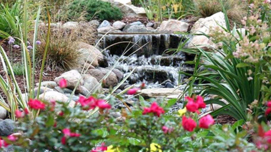 backyard water feature with pond and waterfall