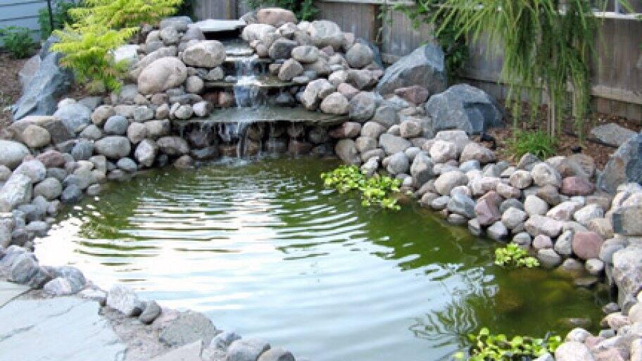 waterfall in backyard pond